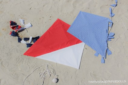 kites with edited logo