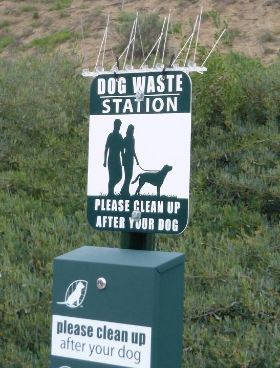 dogwaste