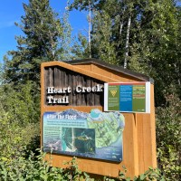 Adventures in the Rocky Mountains: Hiking Heart Creek Trail