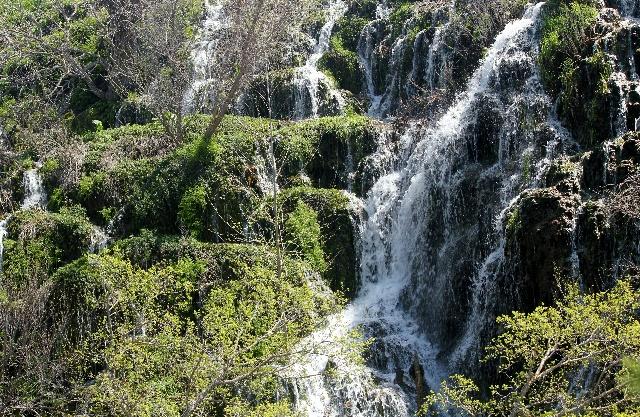 Colorado Bend: falls before Gorman Falls: Two Worlds Treasures