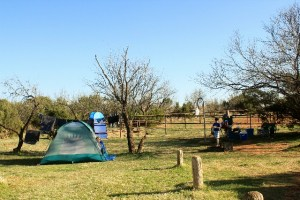 This is the Equestrian Site at Caprock Canyons State Park, TX.