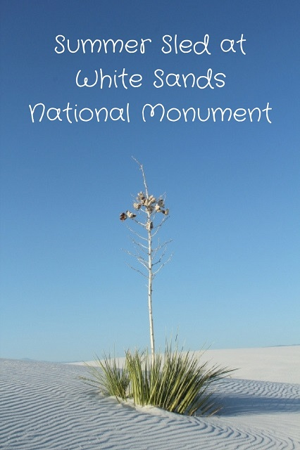 Summer Sled at White Sands National Monument - Pinterest - Two Worlds Treasures