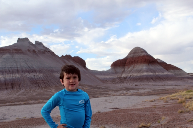 Petrified Forest National Park - tepees - Two Worlds Treasures