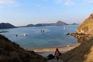 Island Hopping Flores, Indonesia - Day 1 - Padar Island, wooden stairs - Two Worlds Treasures