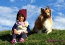 [美國育兒] 5 個步驟讓寶寶狗狗和平相處非難事~!!