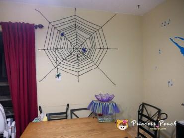 毛根蜘蛛的蜘蛛網