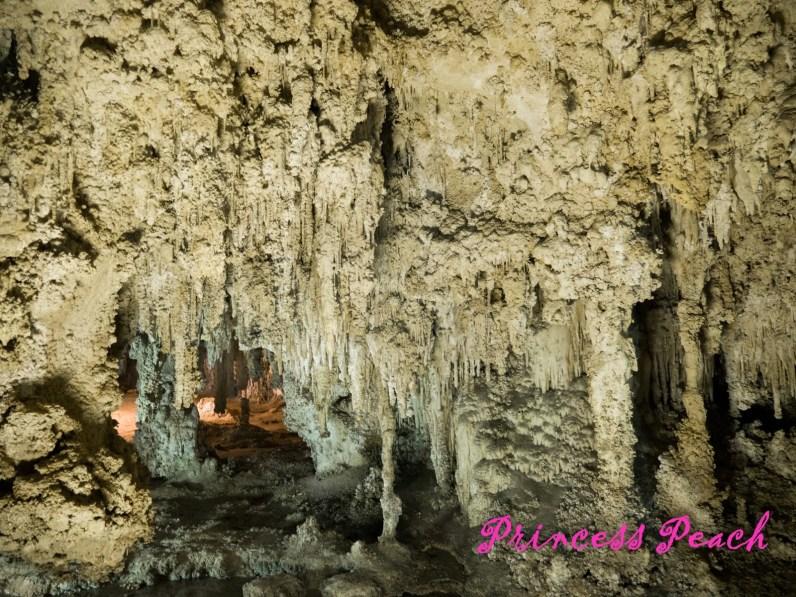 卡爾斯巴德洞窟國家公園