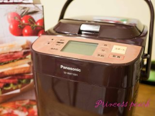 Panasonic SD BMT 1001-t