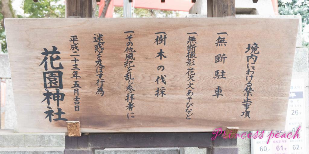 日本: 櫻花漫舞東京親子遊 – 大草原的優雅之新宿御苑~!!! (Tokyo, Japan)