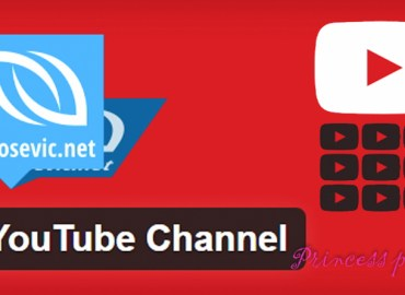 You Tube Channel Plugin