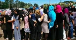 ظروف إنسانية صعبة يعيشها اللاجئون على الحدود الصربية المجرية