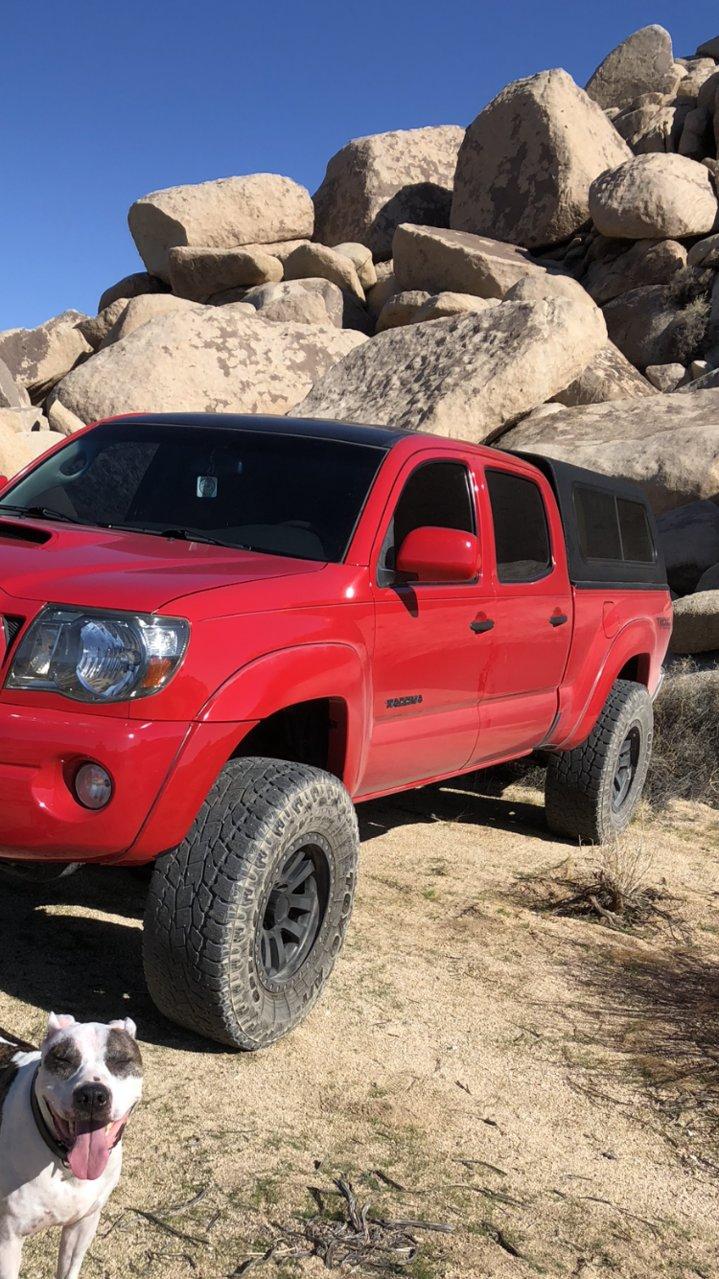 Ranger Truck Cap : ranger, truck, Ranger, Tacoma, World