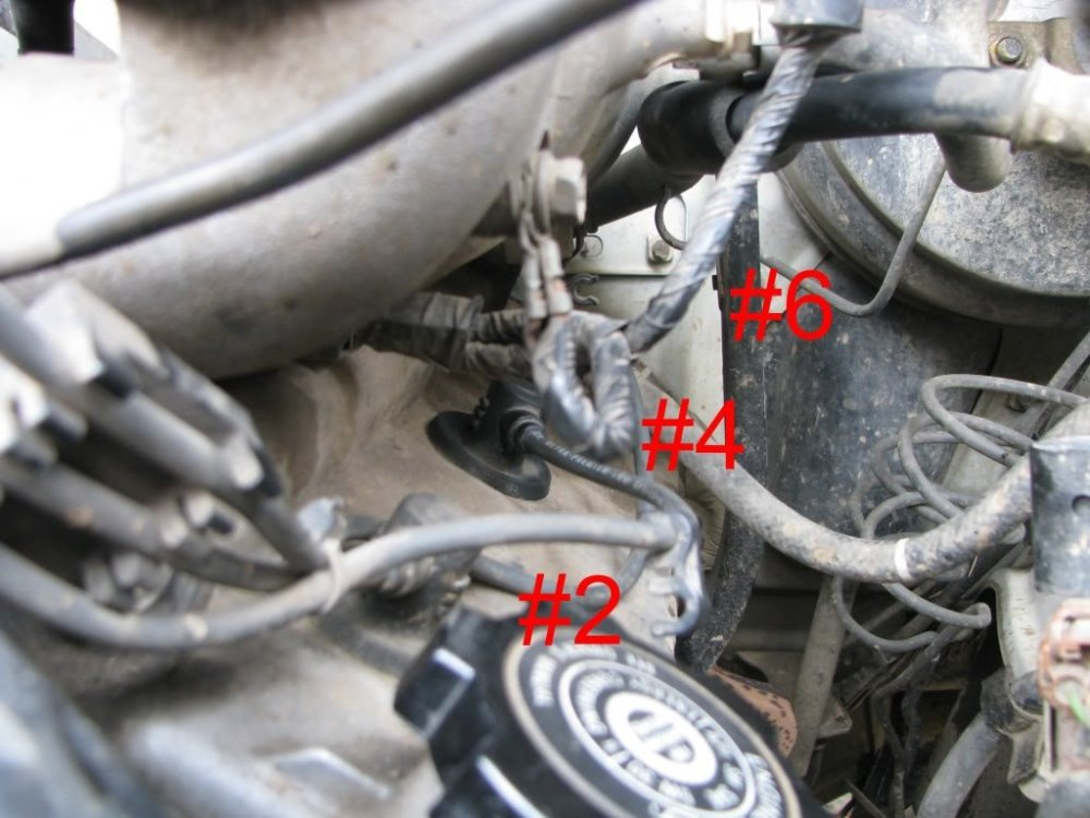 medium resolution of img 1999 e3fa47d2af317511ca1f8f657ca0473c8d4e4908 jpg