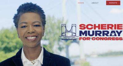 Flipboard: Scherie Murray, latest GOP challenger to AOC ...