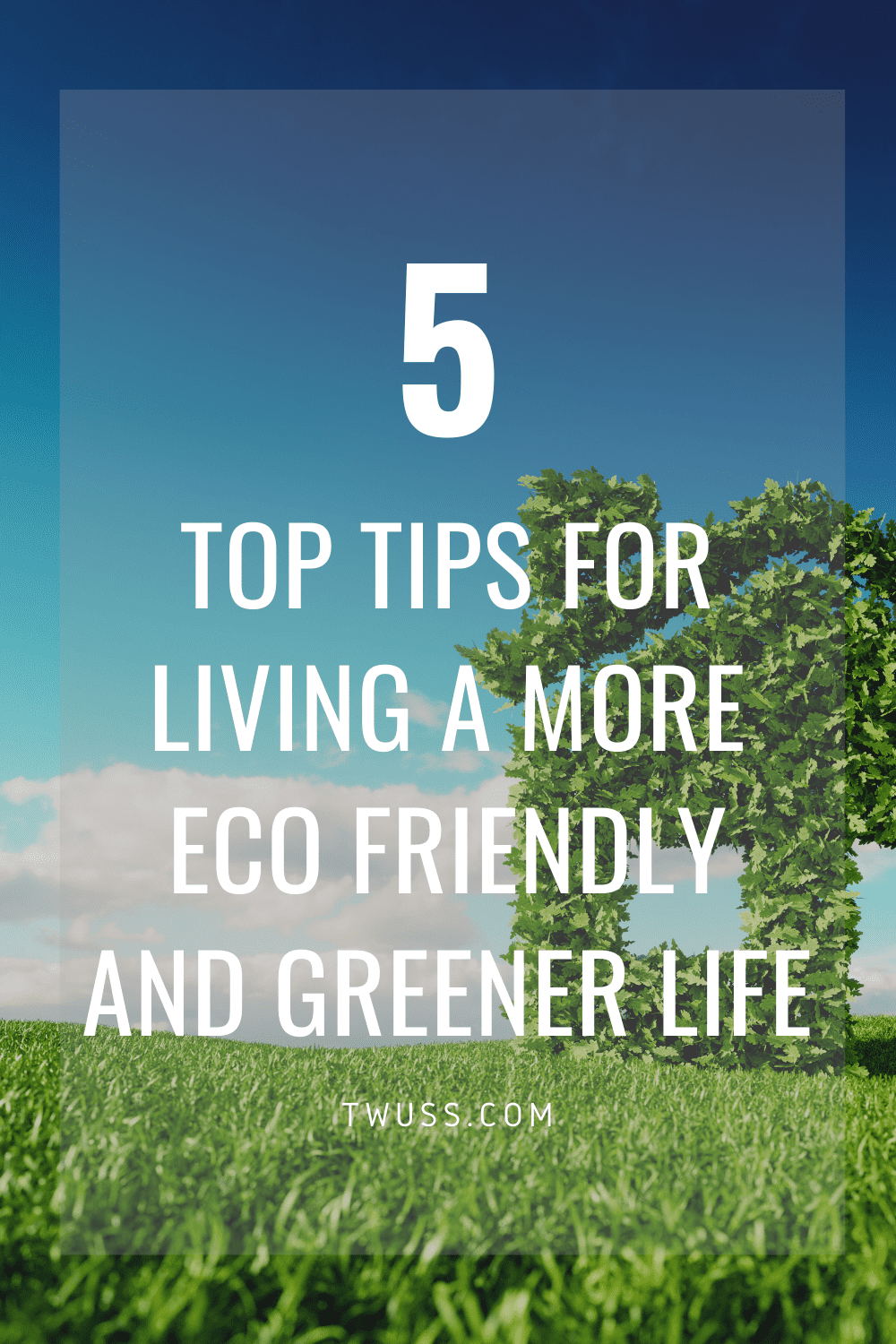 5 top tips for living a more eco friendly and greener life - READ MORE