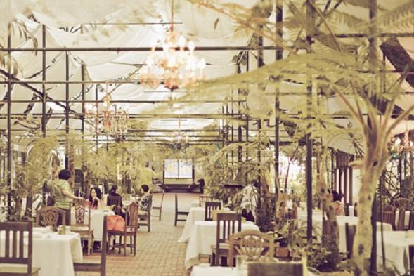 (9) Sonya's Garden 1