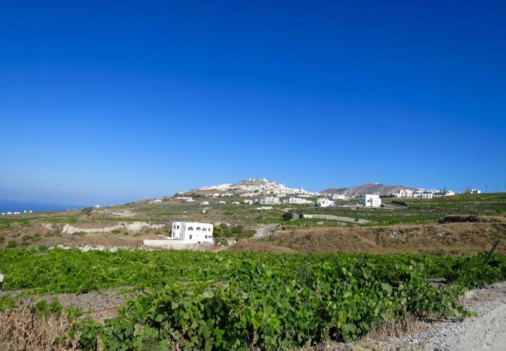 Photo from Santorini Dave