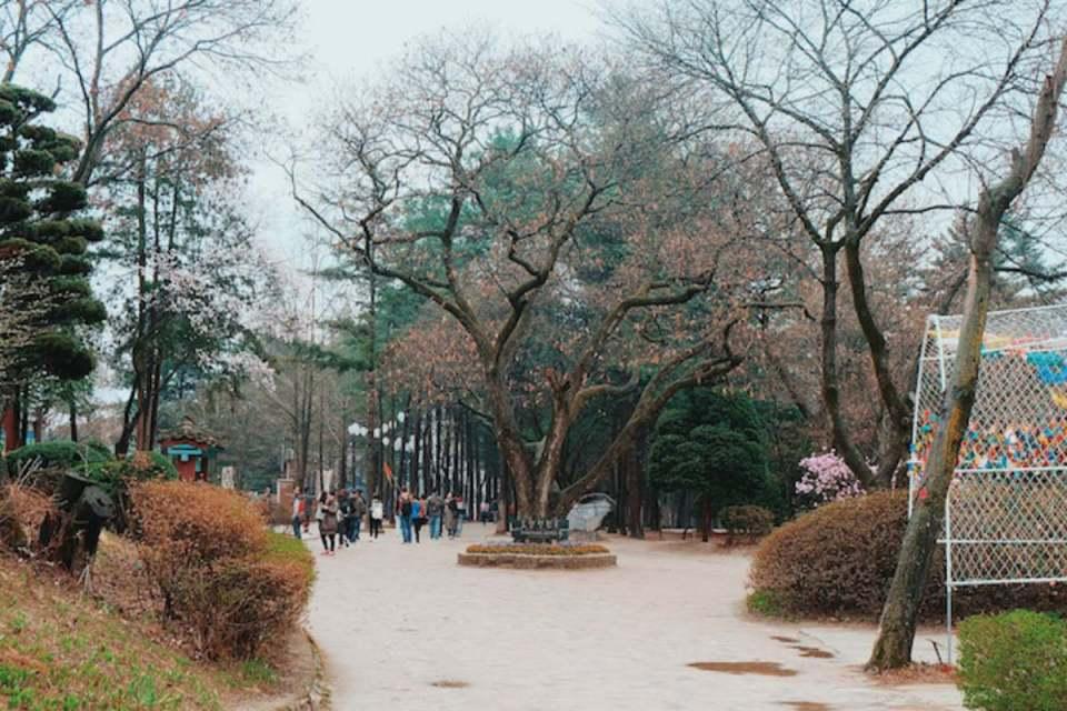 Seoul - nami - anagonzales