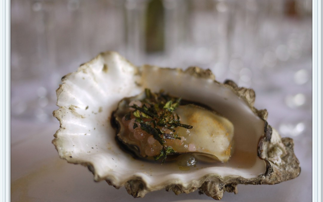 The Pearl of the South Okanagan: Osoyoos Oyster Festival