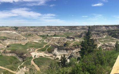 There are Good Things in the Badlands