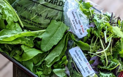 Seasonal Eating: Garden Greens and Herbs