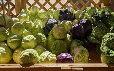 Seasonal Eating: Cabbage, Kale and Brussels Sprouts
