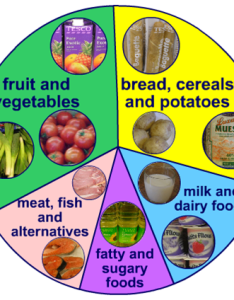 health and well being twynham school gcse pe revision food groups also the chart rh bondingmiami
