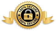 100 percent secure form