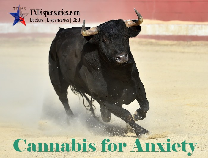 Medical Marijuana Certifications For Anxiety in Texas