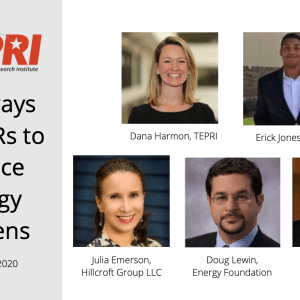 "TEPRI's ""Pathways for DERs to Reduce Energy Burdens"" Webinar Recap"