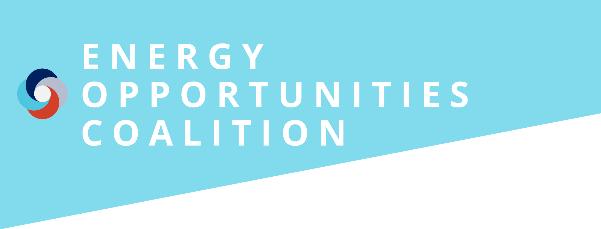 Sociodemographic Disparities in Energy Insecurity Webinar