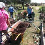 adding mulch to bed 5-5-17