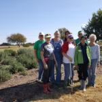 irrigation-crew-11292016
