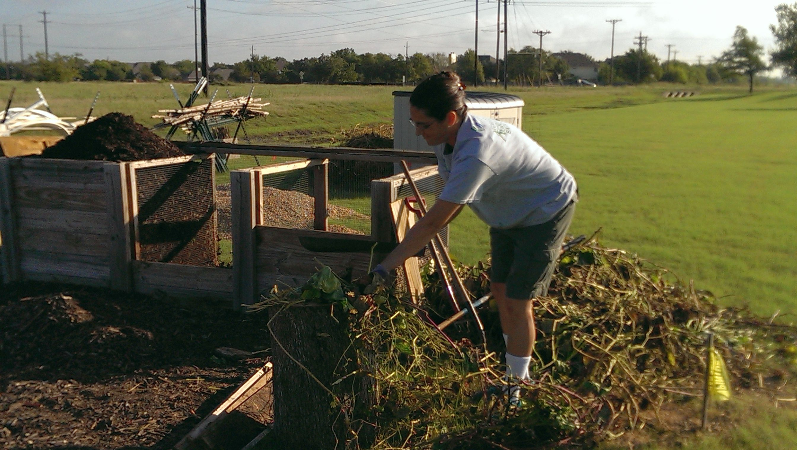 Week Ending 10/12/14 | Williamson County Master Gardeners