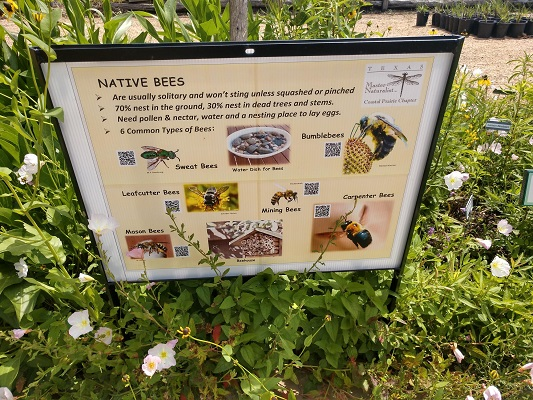 Native Bee Sign-Prairie and Native Plant Garden-resized-AHooper