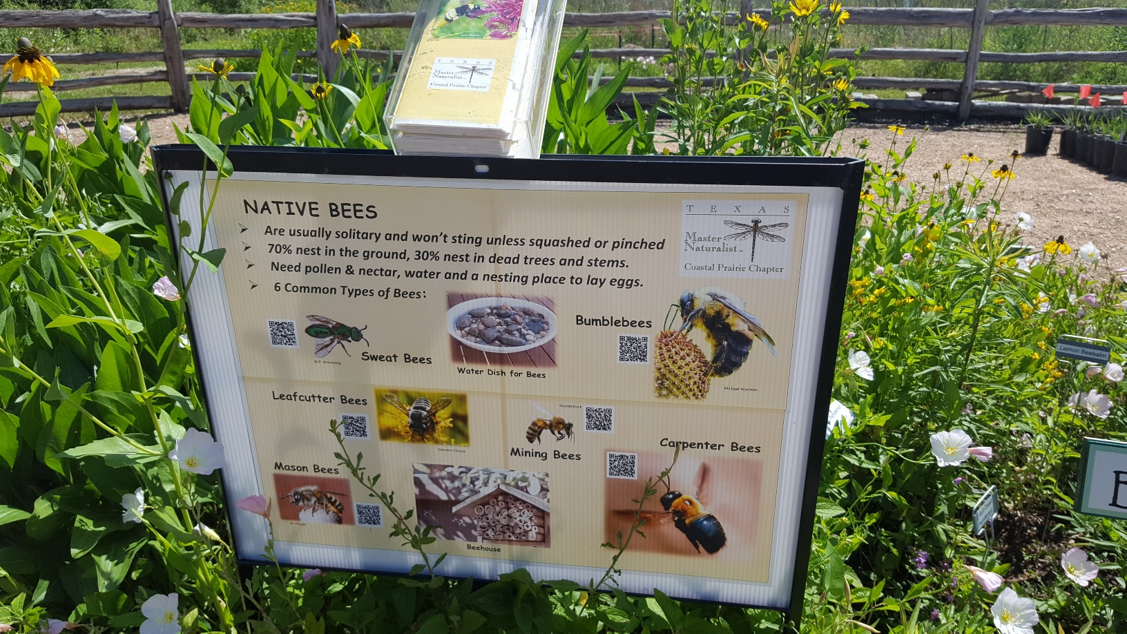Seabourne Nature Park Prairie Garden Native Bees sign on Earth Day 2019 by TMN Kimberly Farou (5)