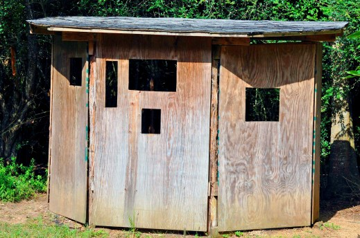 bird blind roof at Seabourne Creek Nature Park
