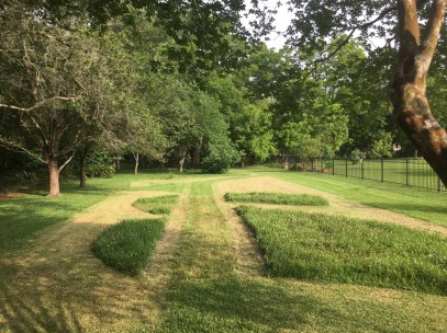 Shannon Westveer's Pocket Prairie May 2019