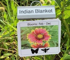 plant sign demo garden