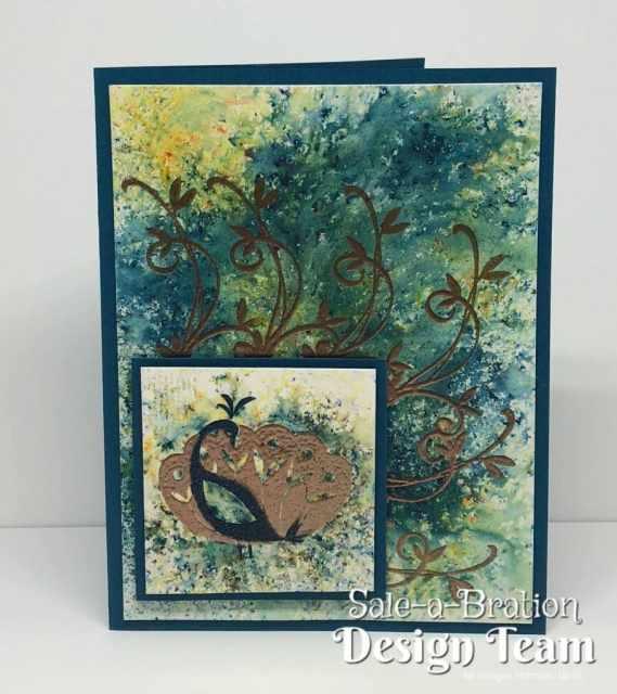 Beautiful Peacock Sale-A-Bration