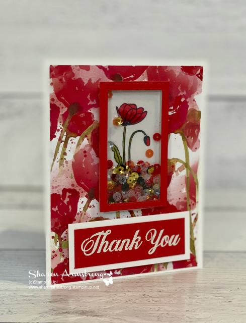 Shaker-card-tutorial-with-peaceful-poppies-designer-paper