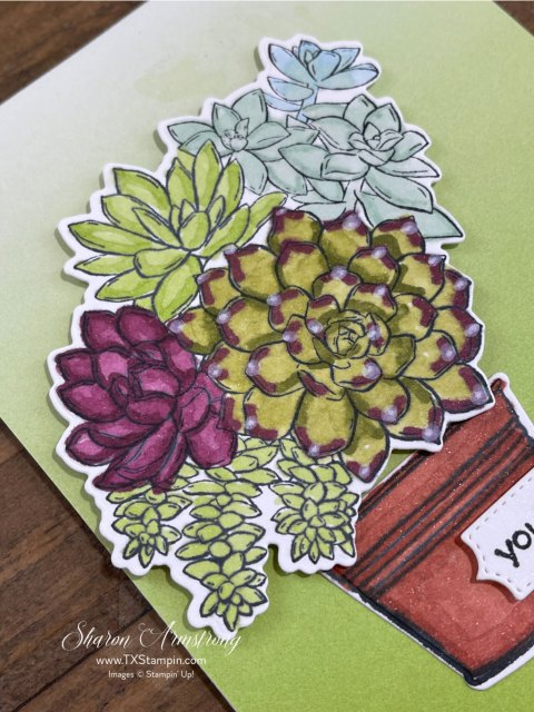Watch the video tutorial to see how I finished this watercolor pencil technique on these plants and flowers.