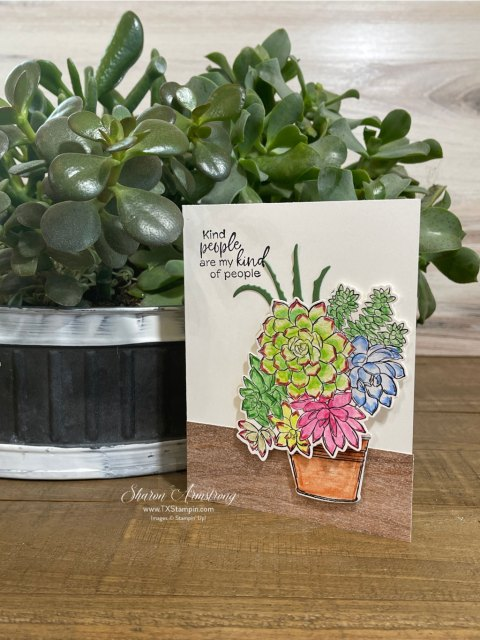 Watercolor pencils were used to first lay color and add water to blend and then used to outline the plants.