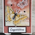Love Handmade Cards? Love Butterflies? Don't Miss These