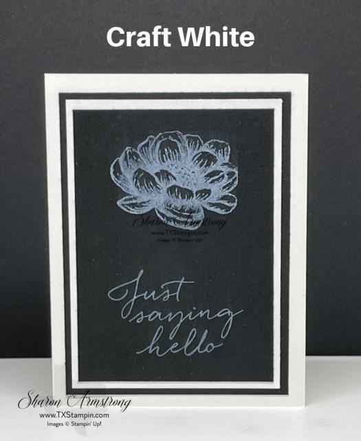 Craft white ink on black cardstock looks stunning.
