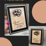 How to Stamp on Acetate