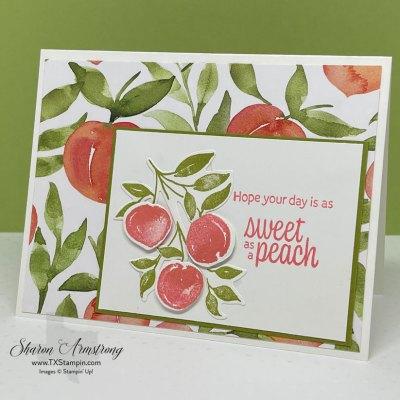 Adorable Sweet as a Peach Card & Irresistible Card Class Offer
