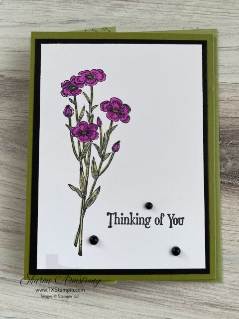 This flap fold card was made as a Thinking of you card with old olive cardstock and stamped flowers.
