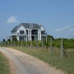 Tara Vineyard and Winery