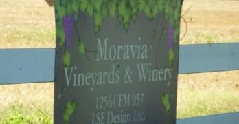 Moravia Vineyard & Winery - sign